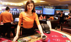 Playing Online Casinos – What to Check Before You Start?